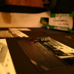 Fotos einer Lochkamera