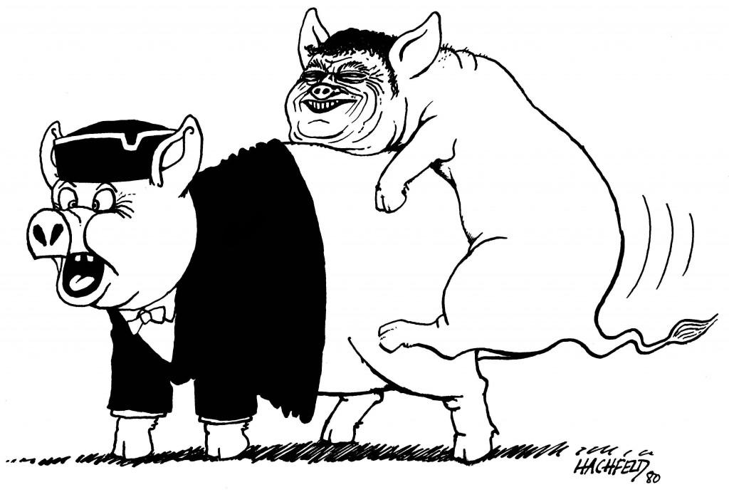 2.Strauß-Schweine(1)